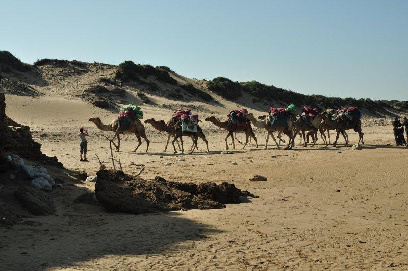 Site de rencontre sur les sables dolonne